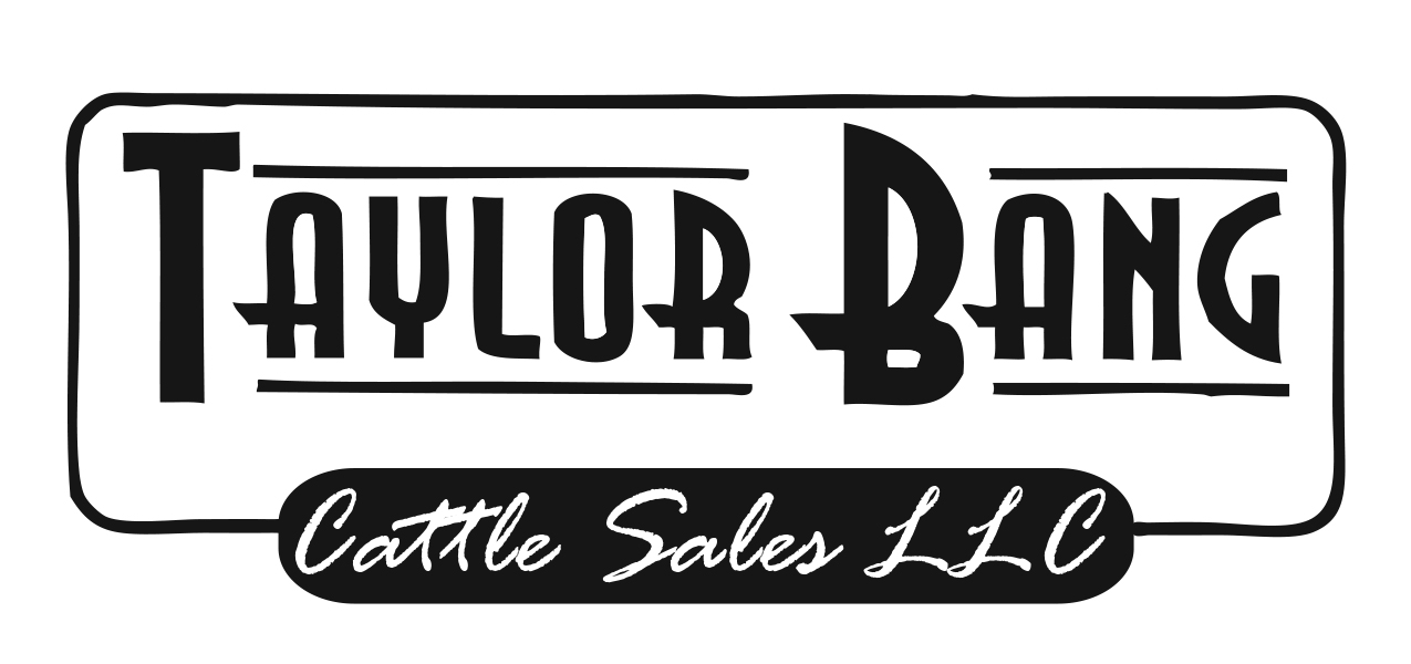 Taylor Bang Cattle Sales, LLC